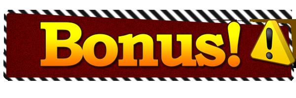 Stor bonus